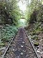 Forgotten railway line - panoramio.jpg