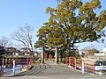 Front of Wakamiya Shrine in Nabeshima Saga.JPG