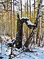 G. Miass, Chelyabinskaya oblast', Russia - panoramio (94).jpg