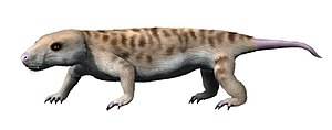 Galesaurus - Restoration of Galesaurus planiceps