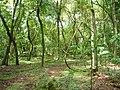 Garruchos - RS, Brazil - panoramio (12).jpg