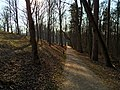 Gelgaudiškio dvaro parke - panoramio (1).jpg
