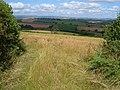 Gep between fields near Gitcombe - geograph.org.uk - 207340.jpg