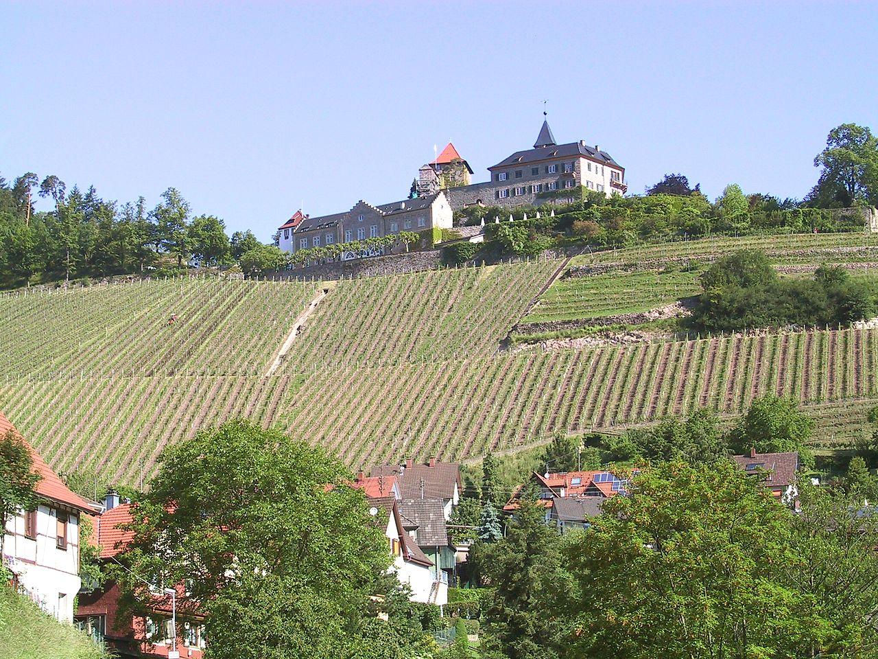 Single gernsbach