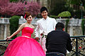 Getting some wedding photos on Pont de larcheveche, 2011.jpg
