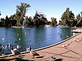 Gibson Park duck pond 1.JPG