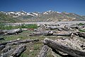 Gifford Pinchot National Forest, Mt St Helens NVM, location near former Spirit Lake Lodge (36338775064).jpg