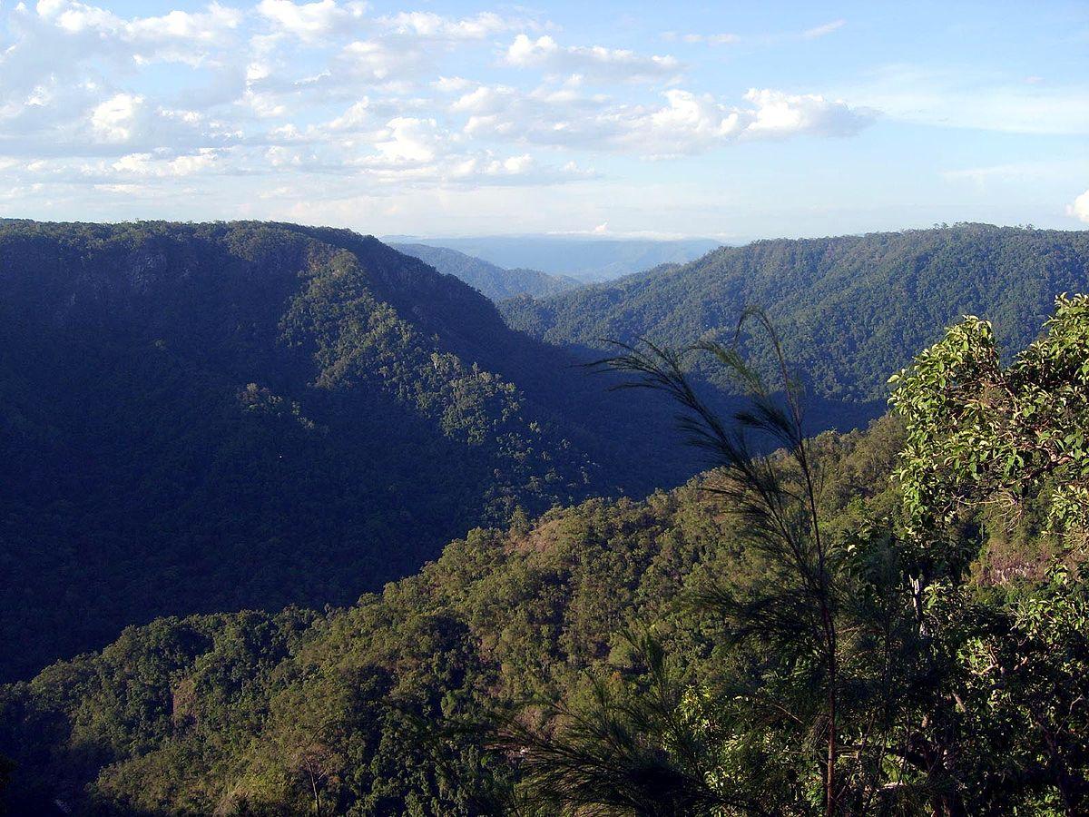 wiki ulidarra national park