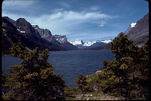 Glacier National Park GLAC4533.jpg