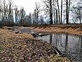 Gladwin Pond, frozen over - panoramio.jpg
