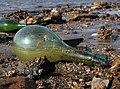 Glass bottle beach (51729).jpg