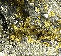 Gold-Pyrite-263192.jpg