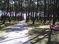 Gorriti 1 - panoramio.jpg