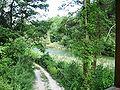 Gottasecca.Il lago del vaglio dalla torretta.jpg