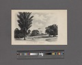 Government House-Singapore (NYPL Hades-2359716-4044481).tiff