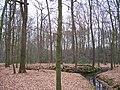 Graeftenanlage Nunnepollen Rhede Westfalen3.jpg