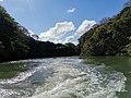 Grand river south east Fluss Mauritius 2019-09-29 9.jpg