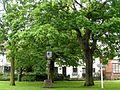 Great Yeldham village sign (geograph 4005064).jpg