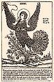 Grebnev sirin postcard.JPG
