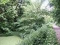Green Grantham Canal - geograph.org.uk - 137273.jpg