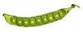 Green pea pod 8872.jpg