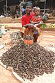 Grubs for Sale - Market Woman with Child - Bobo-Dioulasso - Burkina Faso.jpg