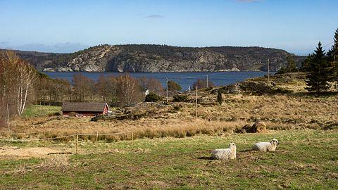 Gullmarn fjord seen from Gullmarsskogen 2.jpg
