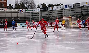 Gustavsbergs IF - Gustavsbergs IF wears red playing bandy.