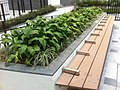 HK 中環 Central 百子里公園 Pak Tze Lane Park - Jan-2012 Ip4 - Long seat.jpg