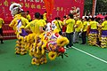 HK 銅鑼灣 CWB 維多利亞公園 Victoria Park for 01-July 舞獅子 Chinese Lion Dance event June 2018 IX2 慶祝香港回歸 Transfer of sovereignty over of Hong Kong 26.jpg