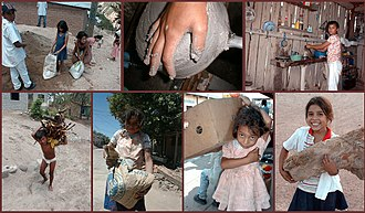 International Labour Organization - Different forms of child labour in Honduras, 1999