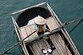 Ha Long Bay, Vietnam, Vietnamese girl selling shells.jpg