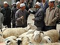 Haggling for sheep.jpg