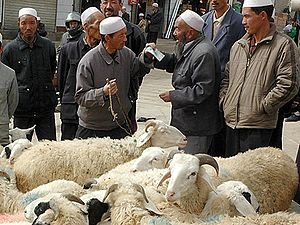 Bargaining - Dongxiangs bargaining for sheep in China's Gansu province.