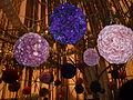 Haifa International Flower Exhibition P1130927.JPG