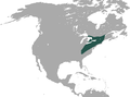 Hairy-tailed Mole range.png
