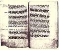 Handschrift Hildesheimer Dombibliothek.jpg