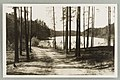 Harjutie, Takaharju, ADAM 1930s PK0259.jpg