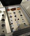 Harvard Museum of Natural History (DerHexer) 2012-07-20 24.jpg