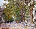 Hassam - elms-east-hampton-new-york.jpg