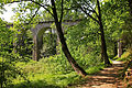 Hausschachenalle in Weitra 2014-05 02 Viadukt NÖ-Naturdenkmal GD-051.jpg