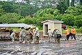 Hawaii National Guard (42671762271).jpg
