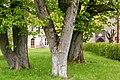 Heiligengrabe, Kloster Stift zum Heiligengrabe, Garten -- 2017 -- 0050.jpg
