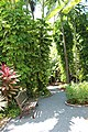 Hemingway House Key West, Florida United States - panoramio (2).jpg