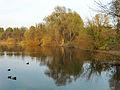 Herbsstimmung am Malchower See.jpg