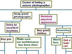 definition of hierarchy