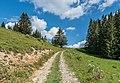 Hiking path in Saint-Jean-d'Aulps 04.jpg