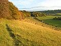 Hillside, Bledlow Ridge - geograph.org.uk - 1024334.jpg