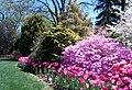 Hillwood Gardens in April (16977400893).jpg