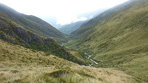 Hokitika River - Hokitika River Headwaters New Zealand